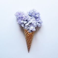 Beautiful and Delicate Photography by This Little Lion – Fubiz™ // ice cream made out of flowers // abstract creative Minimalist Photos, Minimalist Photography, Creative Photography, Art Photography, Photography Flowers, Tabletop Photography, Photo Hacks, Fotografia Macro, Use E Abuse