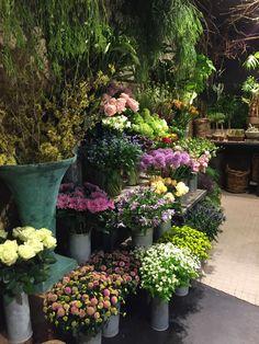 undefined Flower Shop Interiors, Room With Plants, Retail Merchandising, Cut Flowers, Flower Power, Bloom, Flower Shops, Terraces, Shop Ideas