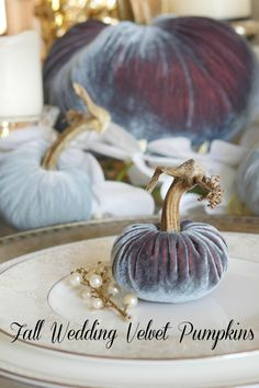 Velvet Pumpkins make the perfect elegant centerpiece for fall weddings or fall party. Use as a fall centerpiece or elegant place setting. Give your guests a fall wedding favor to remember your event. Plush Pumpkin set only available from bluegraygal. shopbluegraygal.com