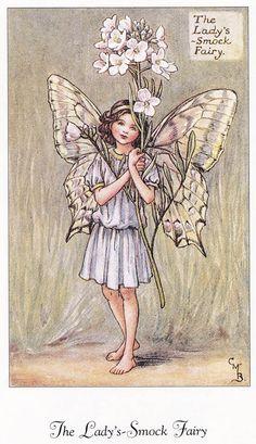 Creative Sketchbook: The Bookshelf: Flower Fairies of the Spring: A celebration by Cicely Mary Barker Fairy Drawings, Fairy Paintings, Cicely Mary Barker, Fairy Pictures, Illustration Art, Illustrations, Vintage Fairies, Fairytale Art, Beautiful Fairies