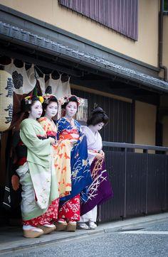 Zuiki Matsuri 2015: maiko Katsune, minarai Naoai, maiko Naokinu and geiko Naokazu by ta_ta999 - blog