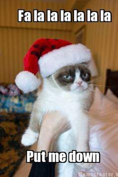 Grumpy Cat goes Caroling