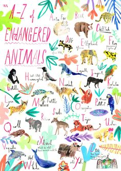 An A-Z of endangered animals.