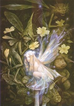 Brian Froud- this is part of my inspiration for the other fairy