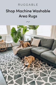 Ruggable machine washable rugs are here! Waterproof, non-slip, and stylish. Finally a rug you won't have to throw out when it gets dirty Living Room Remodel, My Living Room, Interior Design Living Room, Living Room Decor, Bedroom Decor, Kitchen Remodel, Washable Area Rugs, Machine Washable Rugs, Interior Desing