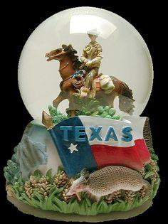 Texas snowglobe w/ armadillo