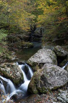 秋の竹田川渓谷 福井県坂井市 Autumn Takedagawa valley Fukui Prefecture Sakai Hokuriku Japan