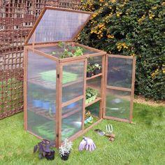 80 meilleures images du tableau Mini serre terrarium jardin en pot ...