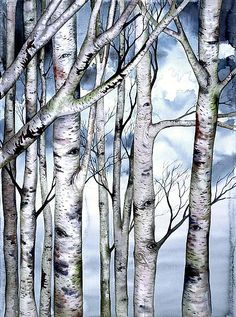 Revisions II limited edition giclee of watercolor painting by Helen Klebesadel Watercolor Trees, Watercolor Paintings, Watercolor Paper, Birch Tree Art, Birch Trees Painting, Aspen Trees, Tree Illustration, Painting Inspiration, Painting & Drawing