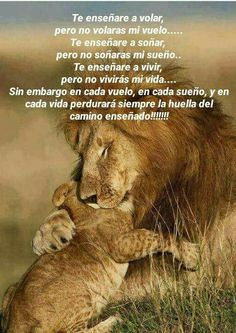Te enseñaré a que seas tú !!! ❤️ I Love My Son, My Beautiful Daughter, Life Is Beautiful, Spanish Inspirational Quotes, Spanish Quotes, Amor Quotes, True Quotes, Bird Quotes, Prayer Quotes