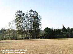 Panoramio - Photos by Photographe piva Cantizani
