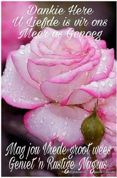 Dankie Here Good Night Blessings, Good Night Wishes, Good Night Quotes, Love Quotes, Evening Greetings, Sleep Quotes, Afrikaanse Quotes, Goeie Nag, Goeie More