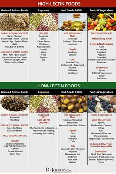 Why You Should Avoid Lectins in Your Diet! DrJockers com is part of Plant paradox diet - This article discusses lectins and their impact on human health It will also go into ways on how to reduce your lectin exposure Low Lectin Foods, Lectin Free Foods, Lectin Free Diet, Diet And Nutrition, Smart Nutrition, Proper Nutrition, Dr Gundry Recipes, Autoimmun Paleo, Paleo Food