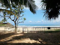 Sign of Life beach Ayurveda, Sri Lanka, Signs Of Life, Beach, Water, Outdoor, Gripe Water, Outdoors, The Beach
