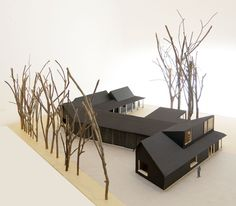 2013 - UN TOIT EN LISIÈRE : BOIDOT & ROBIN ARCHITECTES | AJAP 2014