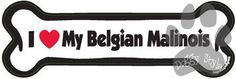 I Love My Belgian Malinois Dog Bone Magnet