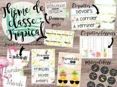 Thème de classe tropical School Organisation, Classroom Organization, Classroom Posters, Classroom Themes, Teaching Tools, Teaching Resources, Posters Diy, Classroom Management Tips, Class Decoration