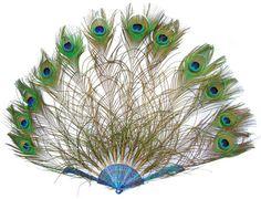 Desire Clothing, Purple Peacock, Vintage Fans, Kentucky Derby Hats, Vintage Accessories, Japanese Art, Antique Jewelry, Vintage Antiques, Bird