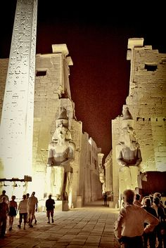 Egypt by night - Explore the World with Travel Nerd Nici, one Country at a Time. http://TravelNerdNici.com