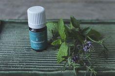 Ce sunt uleiurile esentiale | Thyme Shampoo, Essential Oils, Essential Oil Uses, Essential Oil Blends