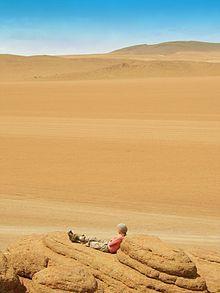 El establecimiento de grupos sociales en los desiertos es complicado y requiere de una importante adaptación a las condiciones extremas que ...