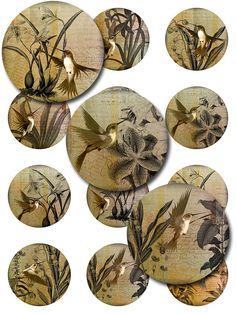 Hummingbirds Vintage Ephemera Botanical Digital by pixeltwister, $3.99