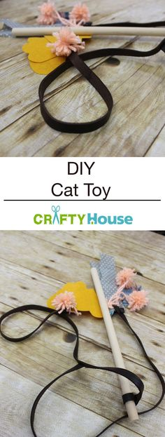 What's That? A DIY Cat Toy? Tell Me More!