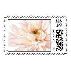 Pink Dahlia Flower - Dahlias Customized Template Postage. Wanna make each letter a special delivery? Try to customize this great stamp template and put a personal touch on the envelope. Just click the image to get started!