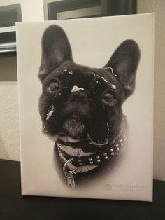 """""""ich würde immer wieder ein Portrait bestellen. Bestellung, Kontakt, Versand und Lieferung alles super! Vielen Dank :)"""" - Kim G.  Wo bekommt man den so ein Hundeportrait? Ganz einfach: Diese einzigartige Haustierkunst bekommst du von Nobelpfoten.  Dein Tierportrait wird in Deutschland hergestellt und versichert verschickt."""
