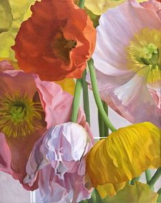 Don Rankin: Poppies (Study) #8, 2010, Painting.
