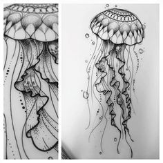 Delicate black line jellyfish tattoo – Tattoo Sketches & Tattoo Drawings Jellyfish Drawing, Jellyfish Painting, Jellyfish Tattoo, Watercolor Jellyfish, Jellyfish Quotes, Jellyfish Aquarium, Jellyfish Sting, Tattoo Watercolor, Jellyfish Light