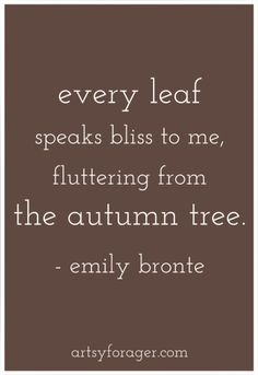 #autumn #fall #leaves #quotes #bronte