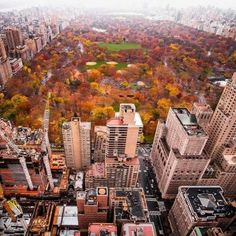 Fall In New York Central Park, USA (144 pieces)