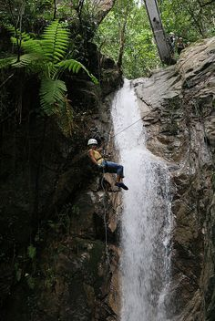 Zip line tour and waterfall rappel on Puerto Vallarta. For more information about our luxurious rental villas in Puerto Vallarta, Mexico visit our website www.villavacationspv.com or give us a call 443 786 7220
