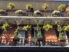 Sunny Iron Balcony in the French Quarter new orleans homes, new orleans history, new orleans architecture