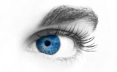 A Natural Supplement for Healthy Eyes- China Bilberry Extract