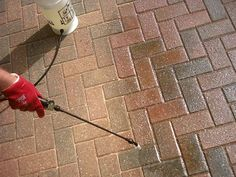 Learn how to apply block paving sealer to driveways & patio paving. Read our guide on sealing pavers with a sealant to stop oil stains, sand loss & weeds Brick Paver Sealer, Driveway Sealer, Brick Driveway, Brick Paver Patio, Concrete Patio, Patio Roof, Best Paver Sealer, Diy Paver, Patio Stairs