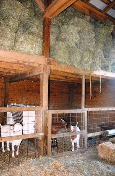 Hay Loft In An Great Plains Eastern Horse Barn
