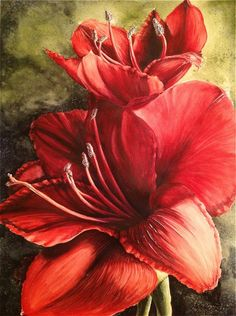 Alive .. Red Amaryllis watercolor painting by Michelle EAST