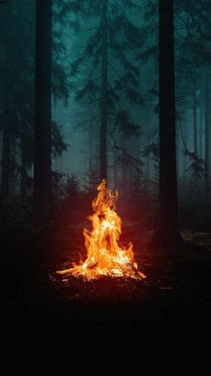 Forest Camping Fire IPhone Wallpaper - IPhone Wallpapers