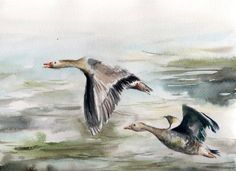 Original Watercolor Painting, Flying Geese Painting, Bird Watercolour Art by CanotStop on Etsy