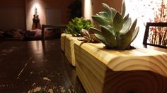 Poly Planters