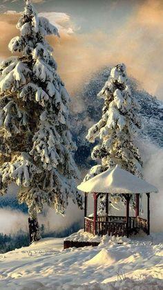 Winter doesn't have to be the season of grey skies and runny noses. There's a gleaming crystalline beauty to winter that often gets overlooked. Winter Magic, Winter Snow, Winter Time, Winter Pictures, Nature Pictures, Beautiful Places, Beautiful Pictures, Winter Scenery, Snowy Day