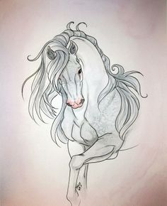 White Horse  Drawing by Terese Walter Antonsen,