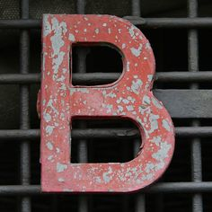 Name something , someone, a moment , anything that makes you feel joy, starting with the letter B !