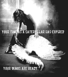 your time as a caterpillar has expired your wings are ready - Google zoeken