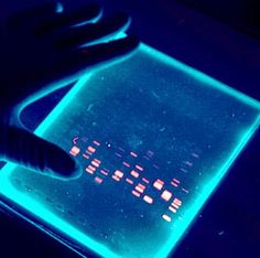 Medical Laboratory and Biomedical Science: DNA Gel Electrophoresis