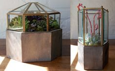 Terrariums from Upcycled Light Fixtures