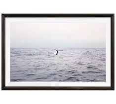 """Pacific Whale Watching Framed Print by Jane Wilder, 42 x 28"""", Ridged Distressed Frame, Black, Mat"""