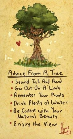 ~Advice From A Tree: stand tall and proud. go out on a limb. remember your roots. drink plenty of water. be content with your natural beauty. enjoy the view.~
